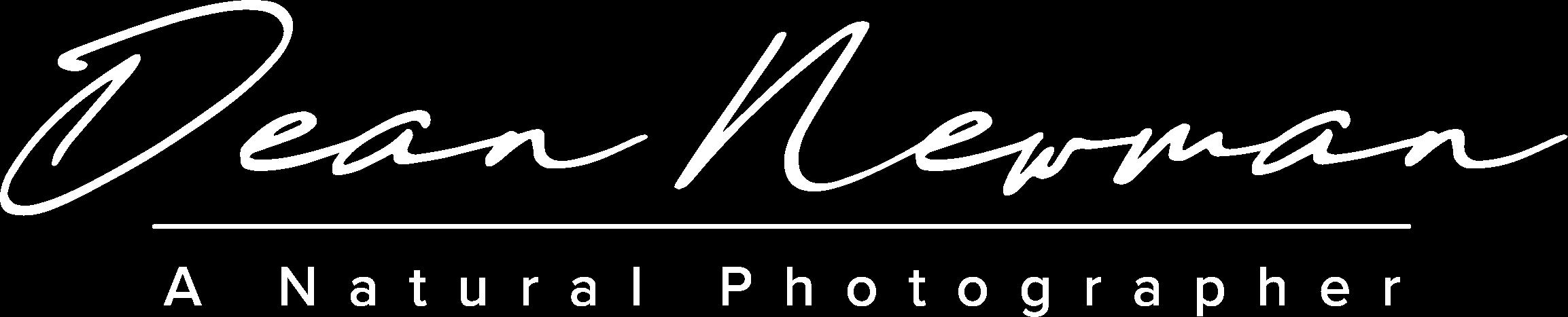 Dean Newman Photography